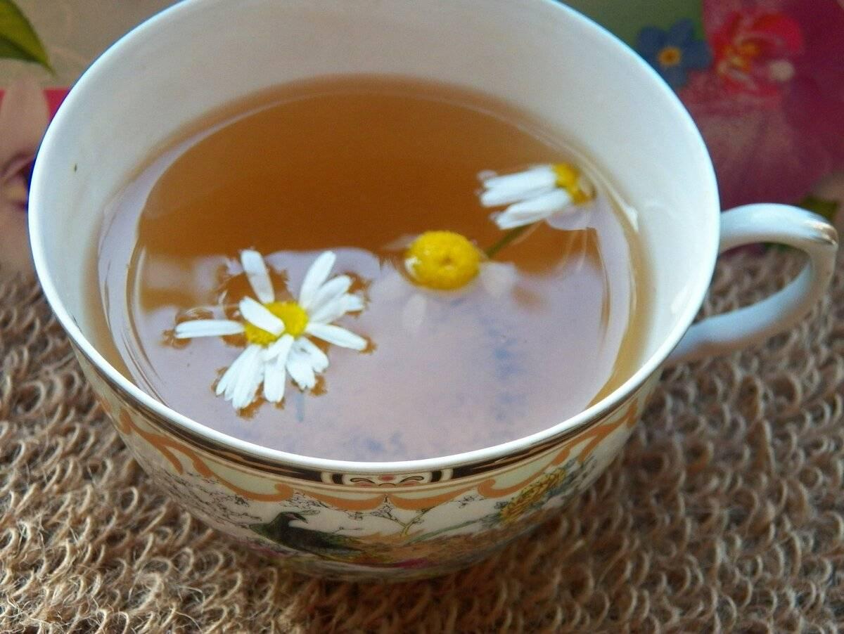 Чай из ромашки, факты, польза и вред употребления