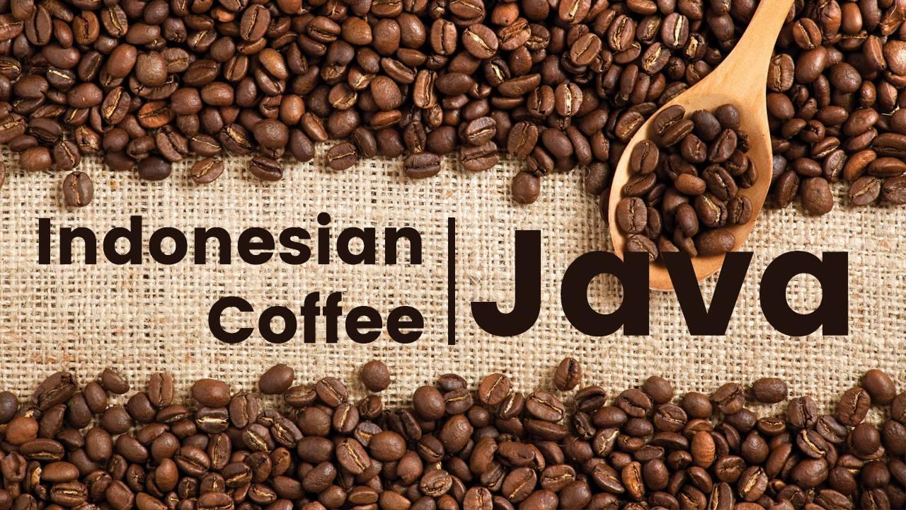 Характеристика сорта арабики Ява (Java)