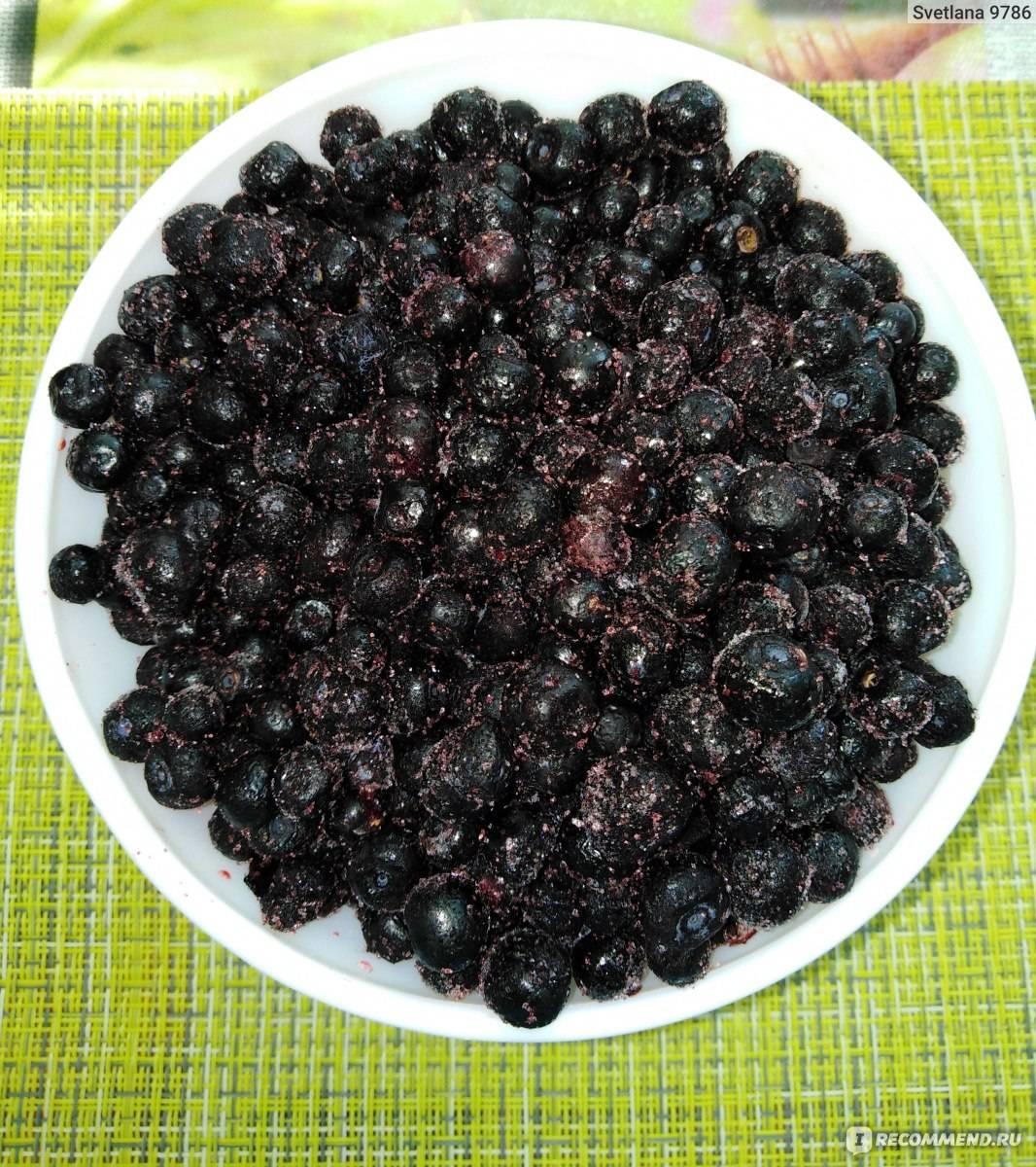 Кисель из черники при поносе: рецепт из замороженной и сушеной черники, можно ли пить кисель при диарее у ребенка