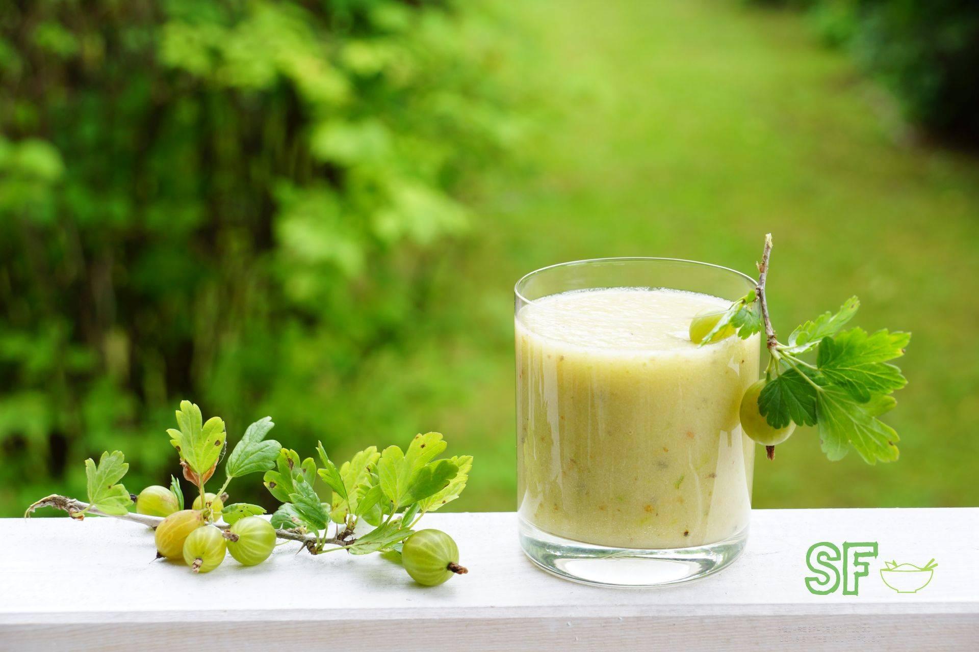 Рецепты смузи с крыжовником, или удивительный микс из ягод