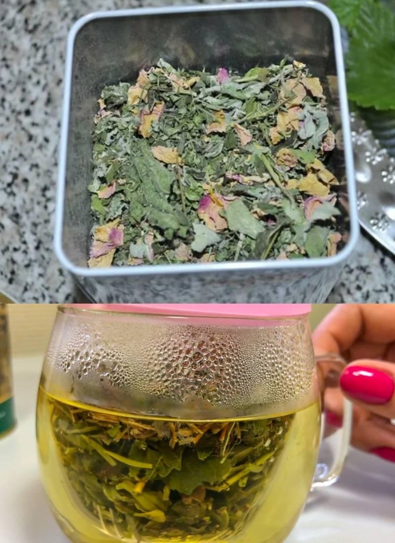 Список трав, из которых можно приготовить ароматный и полезный чай