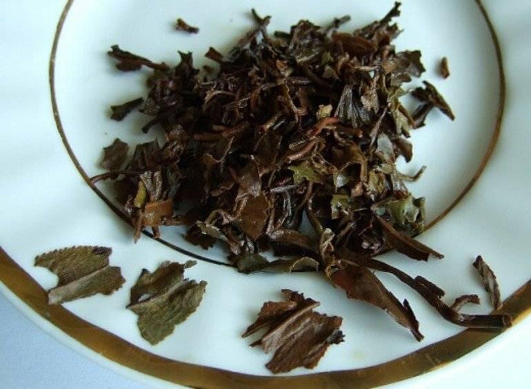 7 способов использования спитого чая на огороде