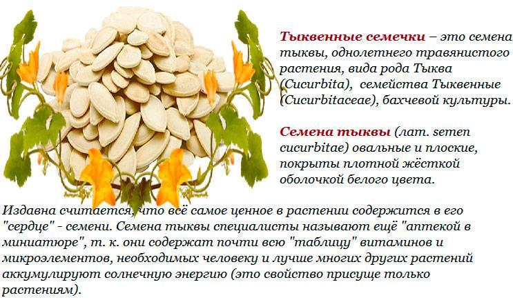 Чай из тыквенных семечек