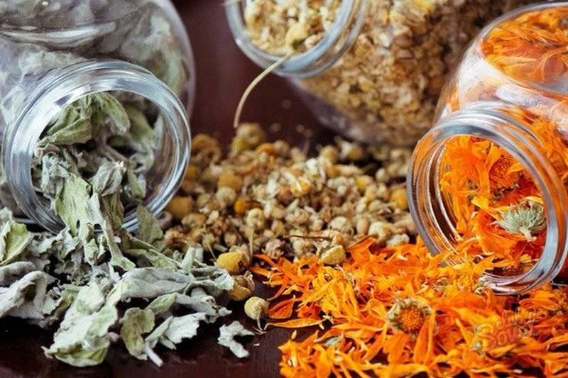 Как правильно сушить мяту перечную в домашних условиях, также для чая: можно ли в духовке и микроволновке, когда нужно собирать листья и стебли, как хранить?