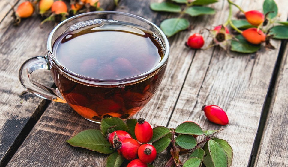 Чай с шиповником: польза и вред, противопоказания, как его правильно заваривать