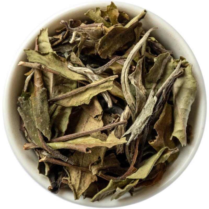 Бай му дань – белый пион – изысканный и великолепный чай — выкладываем все нюансы
