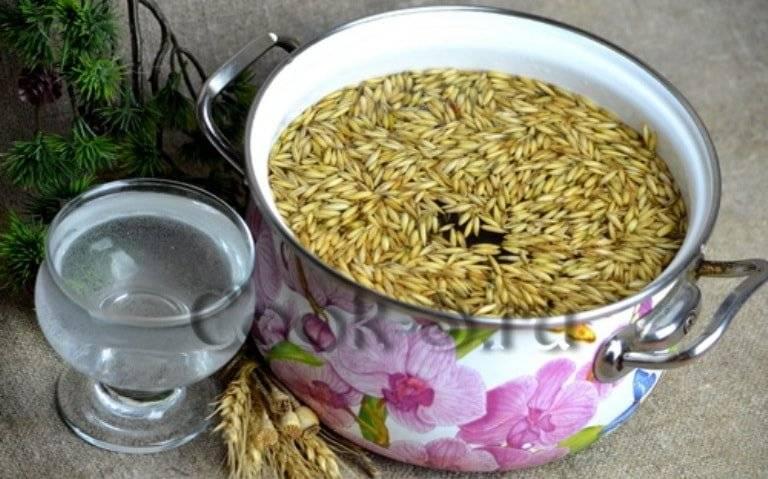 Овес для печени: лучшие рецепты для чистки и лечения
