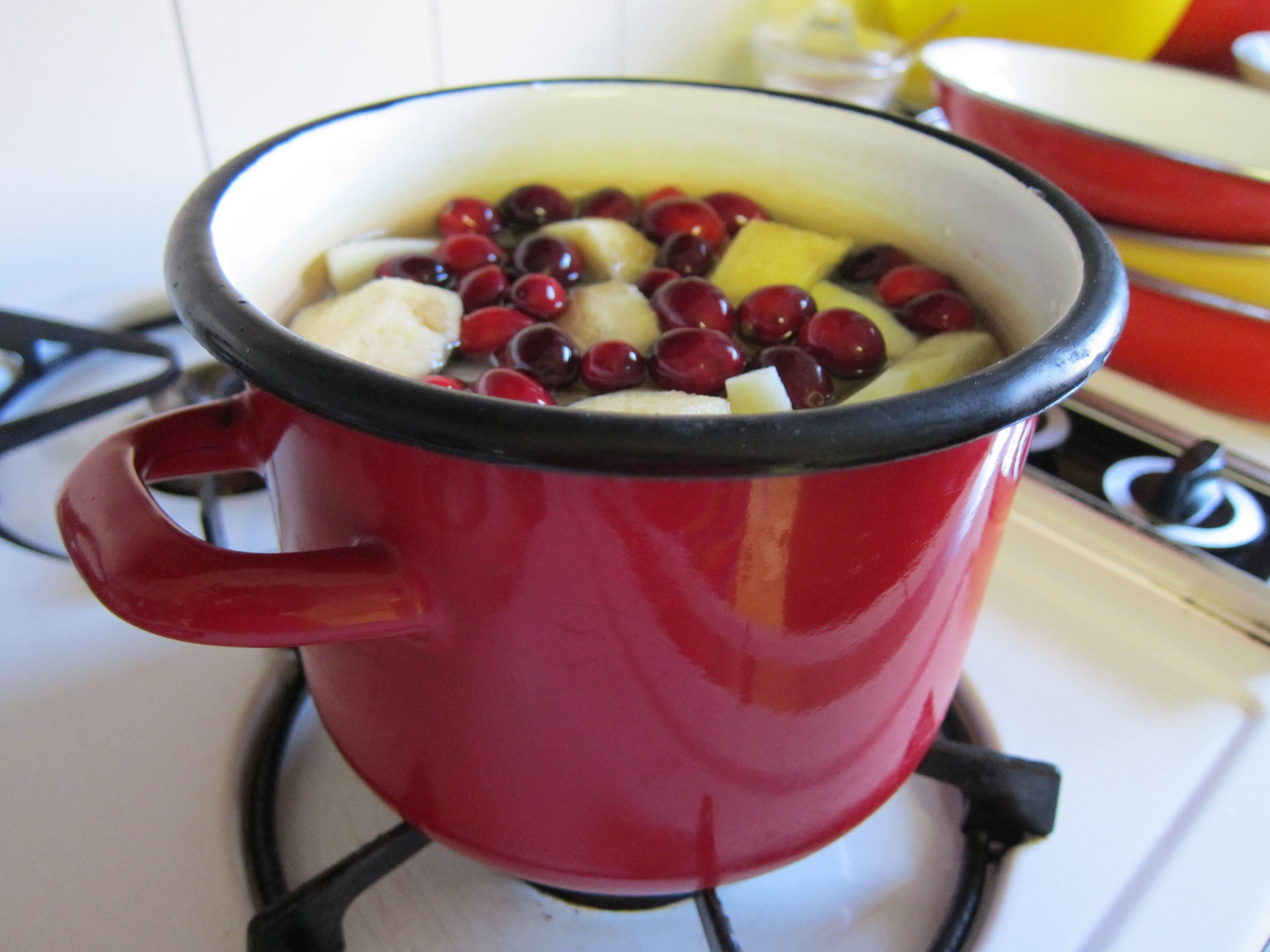 Компот из замороженных ягод — рецепты с вишней, клюквой, брусникой и крыжовником