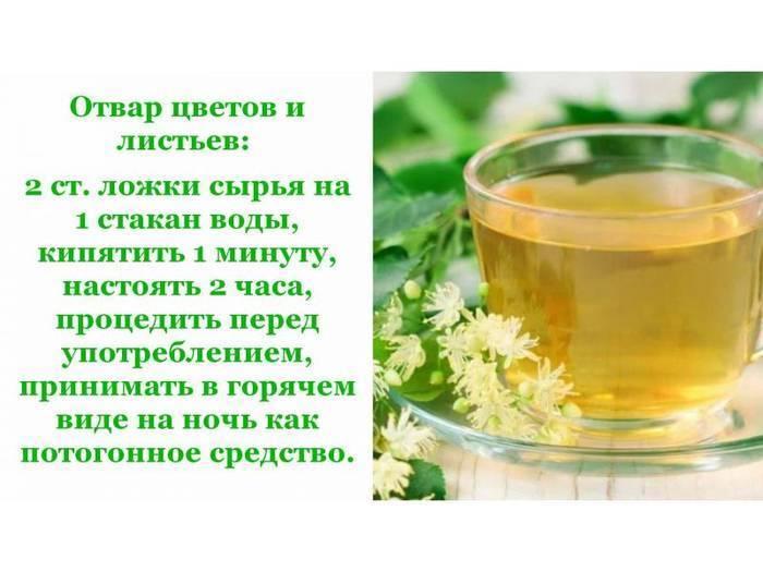 Липовый чай полезные свойства, изучение пользы и вреда