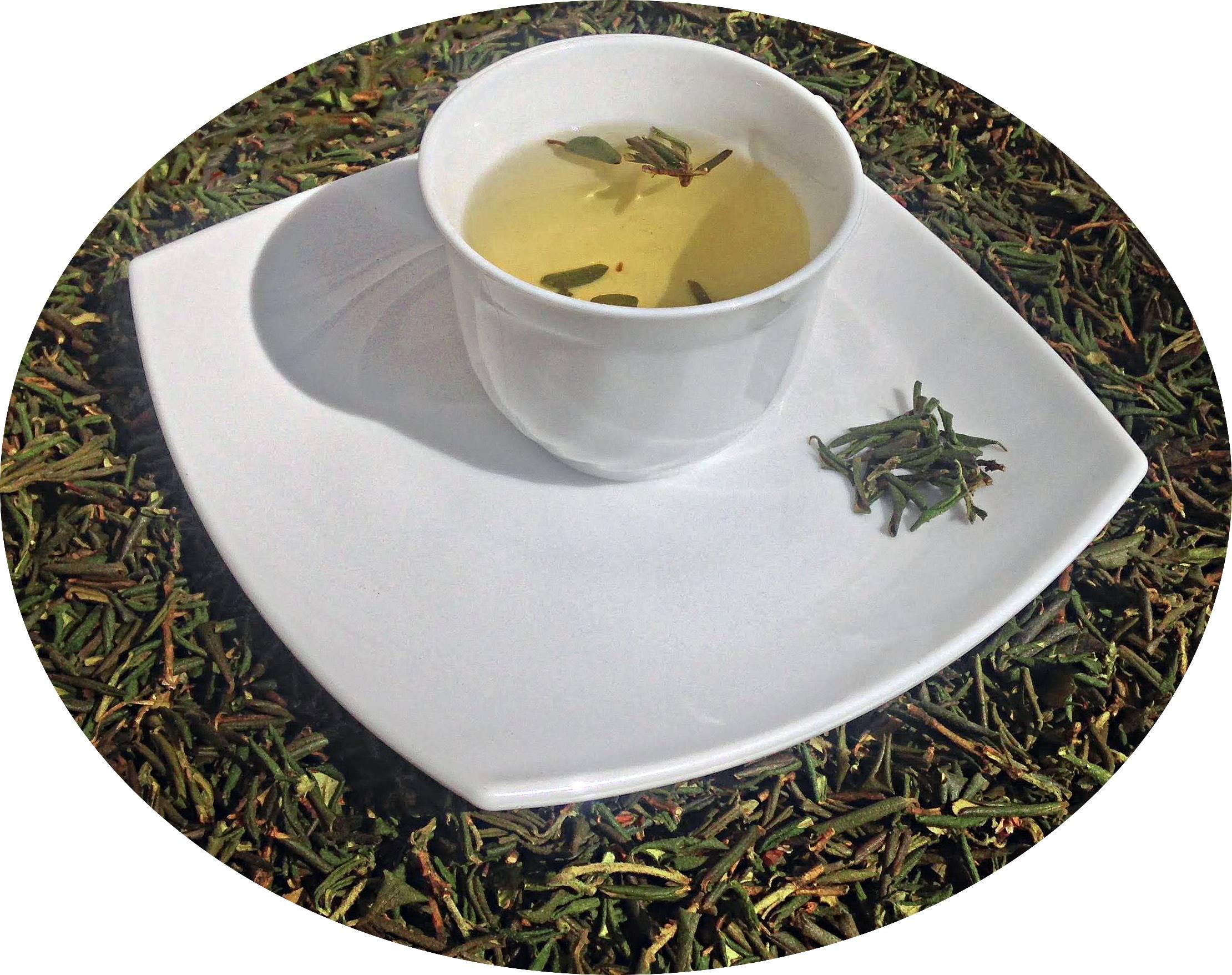 Саган-дайля: полезные свойства и противопоказания, как заваривать травяной чай и отзывы о лекарственной траве