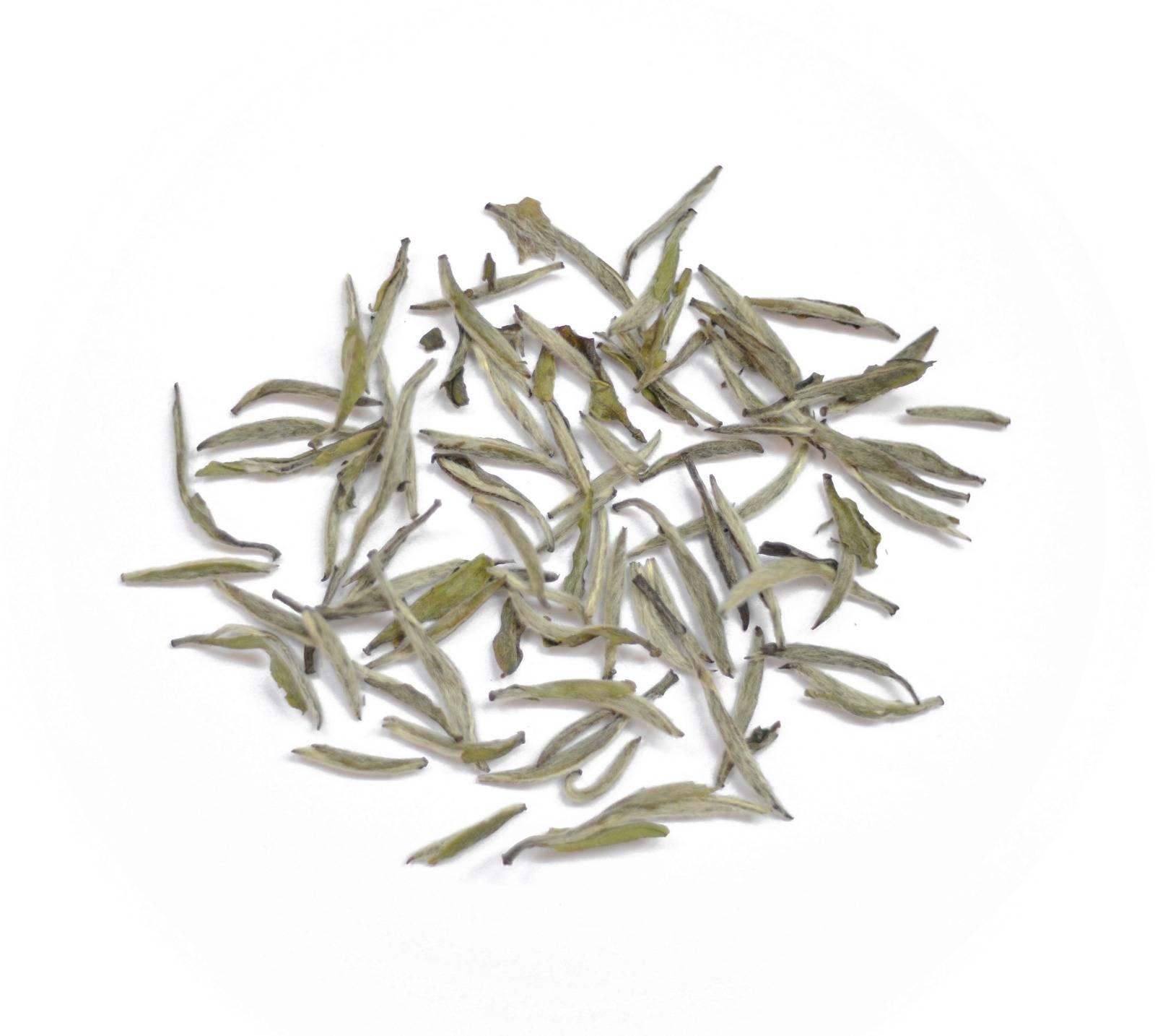 Китайский чай белый пион (бай му дань). польза и вред напитка, замедляющего старение