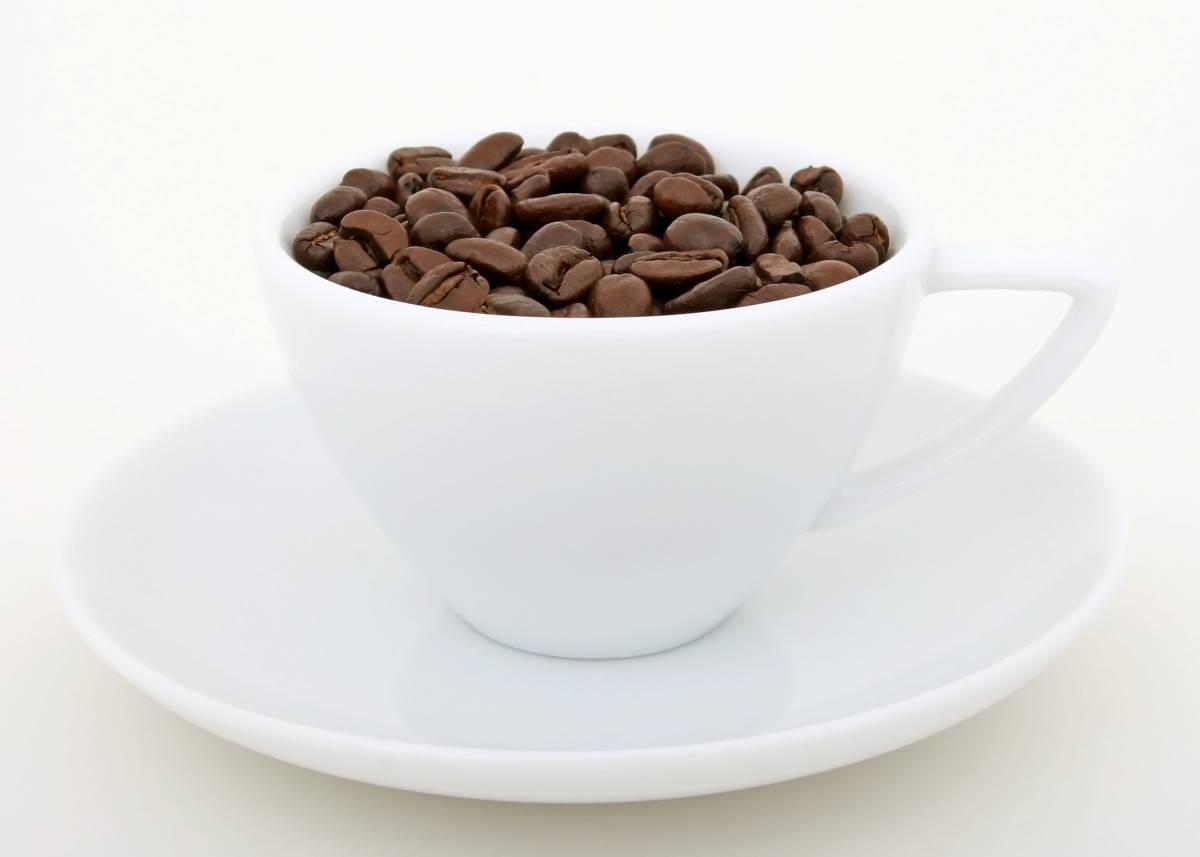 Белый кофе: история происхождения и виды напитков