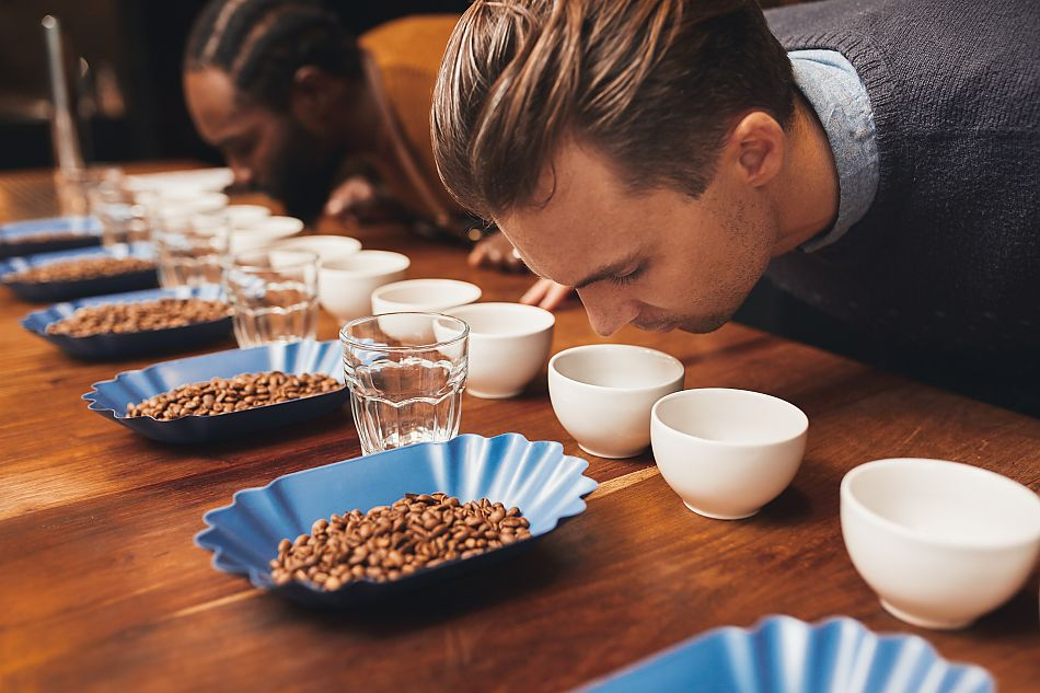 Кофе (ручной сбор) - стриппинг, пиккинг, механический сбор кофе
