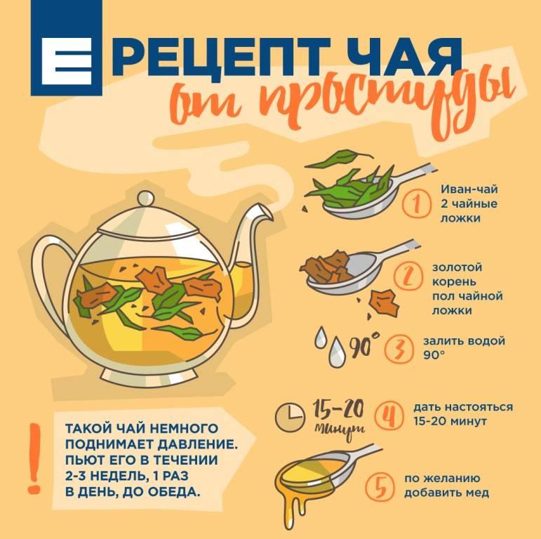 Какой чай надо пить при простуде - 8 лучших рецептов для тех, кто заболел