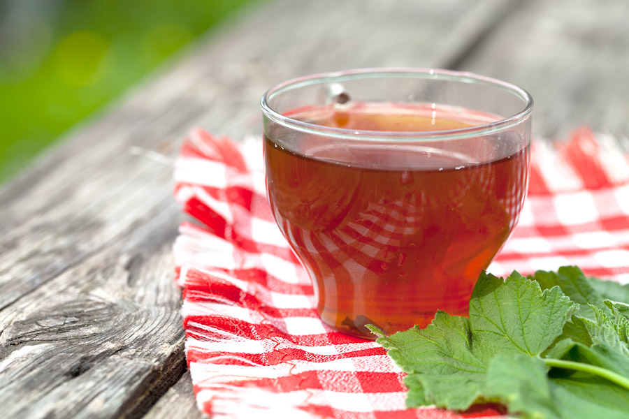 Чай из листьев земляники польза вред как заваривать, земляничный чай. - польза и вред зеленого чая