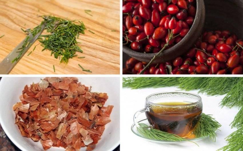 Хвоя сосны - полезные свойства и противопоказания, рецепты