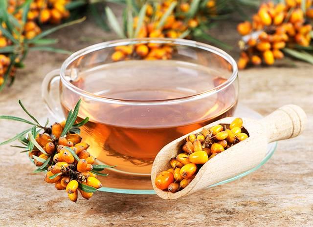 Рецепты облепихового чая, польза и противопоказания, как заварить