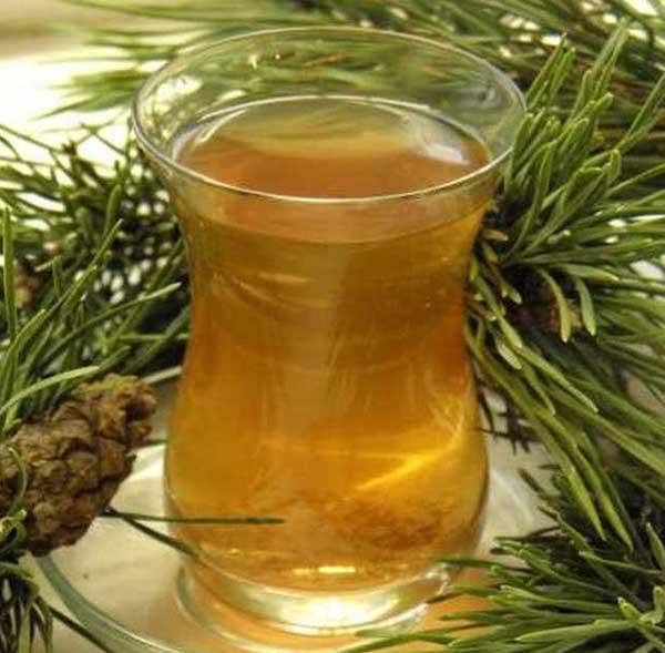 Хвойный чай рецепт | похудение тут