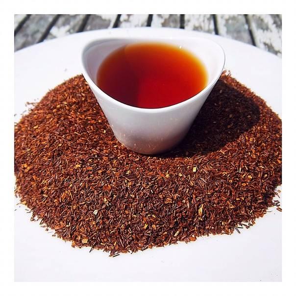 Чай ройбос: польза и вред