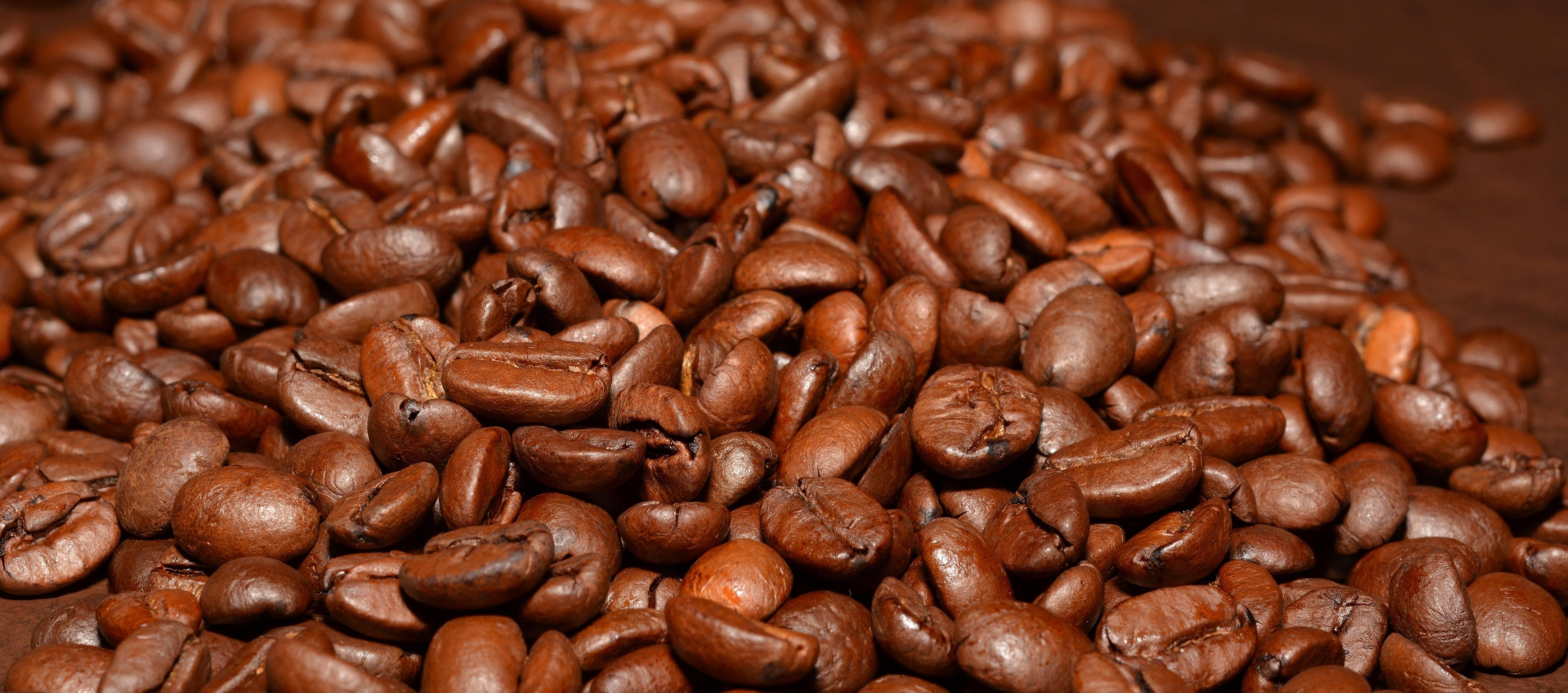 Кубинский кофе   сорта кофе