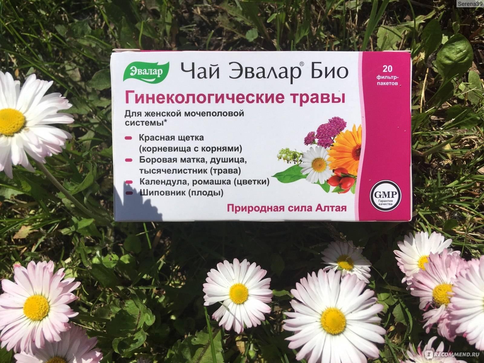 Мочегонные травы и сборы - список. какие мочегонные травы пить от повышенного давления, отеков и для похудения