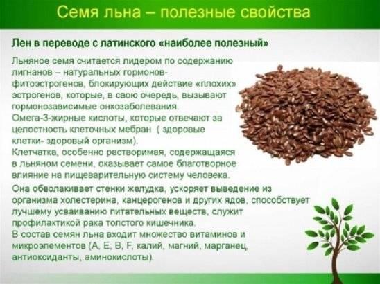 Как заваривать семена льна: лечебные свойства, рецепты, противопоказания