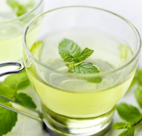 Зеленый чай с мятой – очень ароматный и тонизирующий напиток