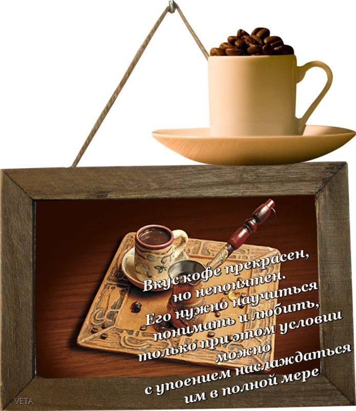 Цитаты о кофе: афоризмы, прикольные высказывания, пословицы