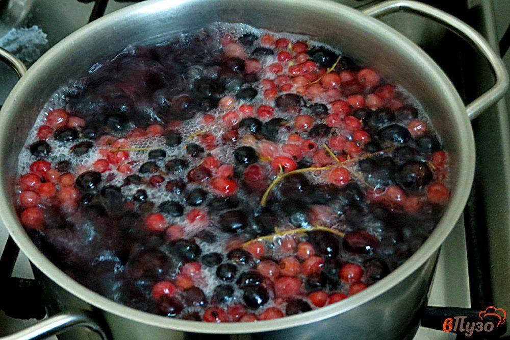 Компот из красной смородины на зиму - 9 простых рецептов с фото пошагово
