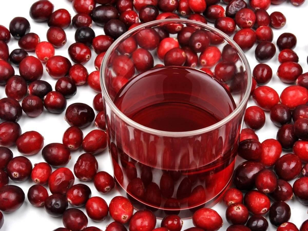 Польза и вред клюквы для здоровья: как употреблять сок, морс и чай из ягод при разных болезнях и похудении
