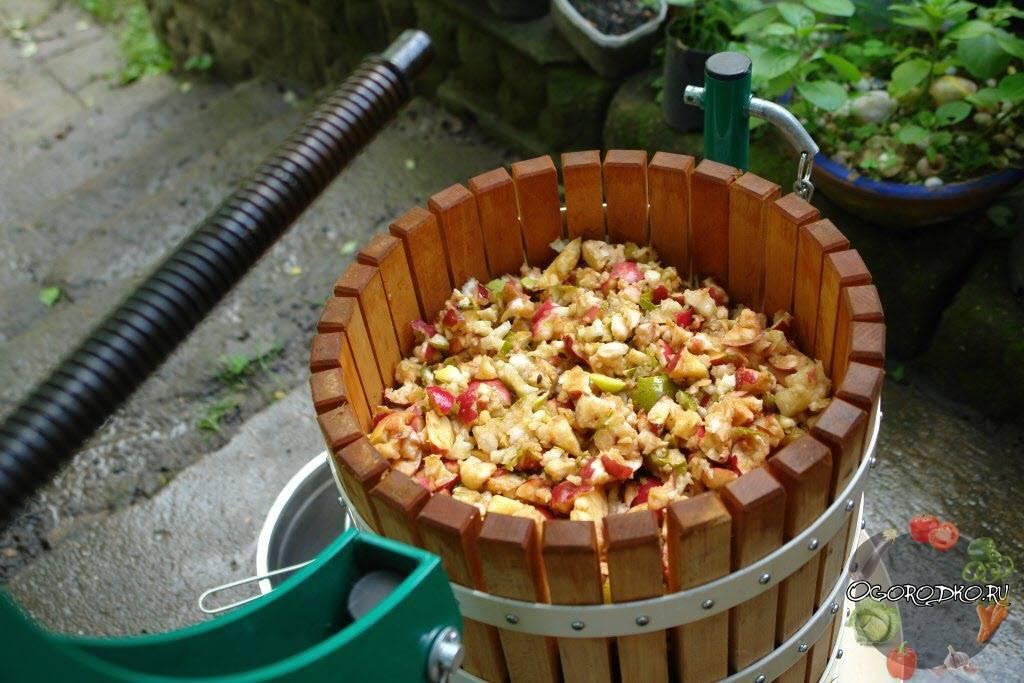 Как выжать яблочный сок без пресса и соковыжималки в домашних условиях