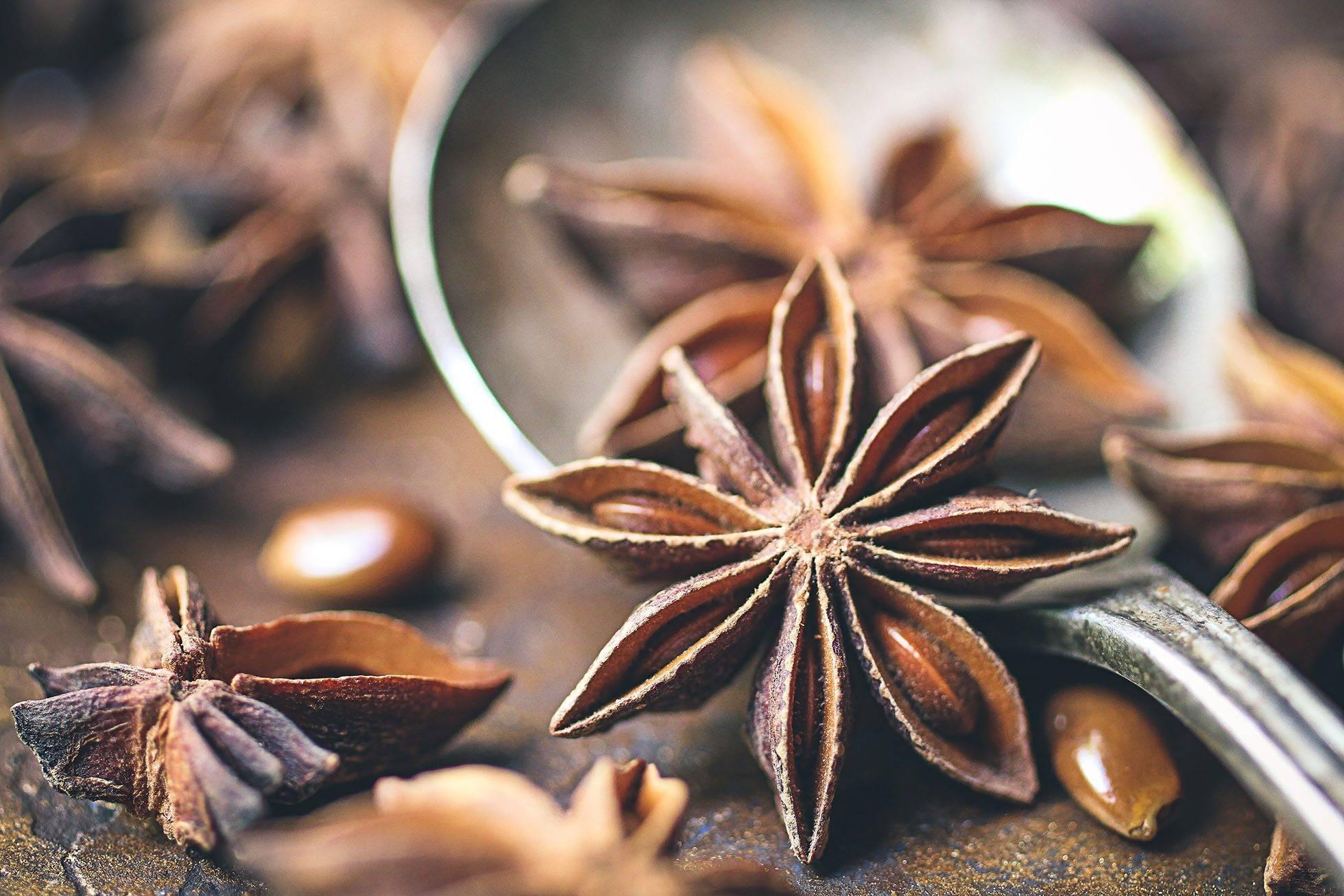 Бадьян: полезные свойства и противопоказания, чай, настой, настойка, отвар, корни, эфирное масло   народная медицина   dlja-pohudenija.ru