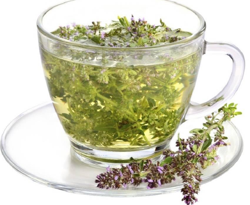 Мятный чай способен вызывать схватки
