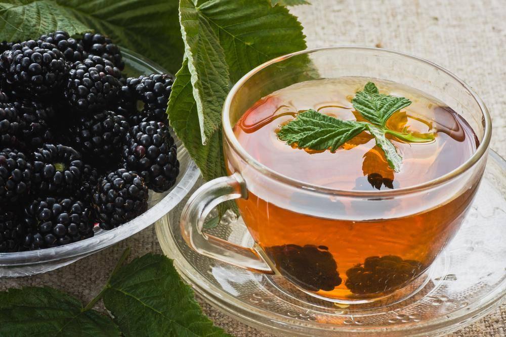 Чай из ежевики: польза и вред, рецепты с ягодами и листьями