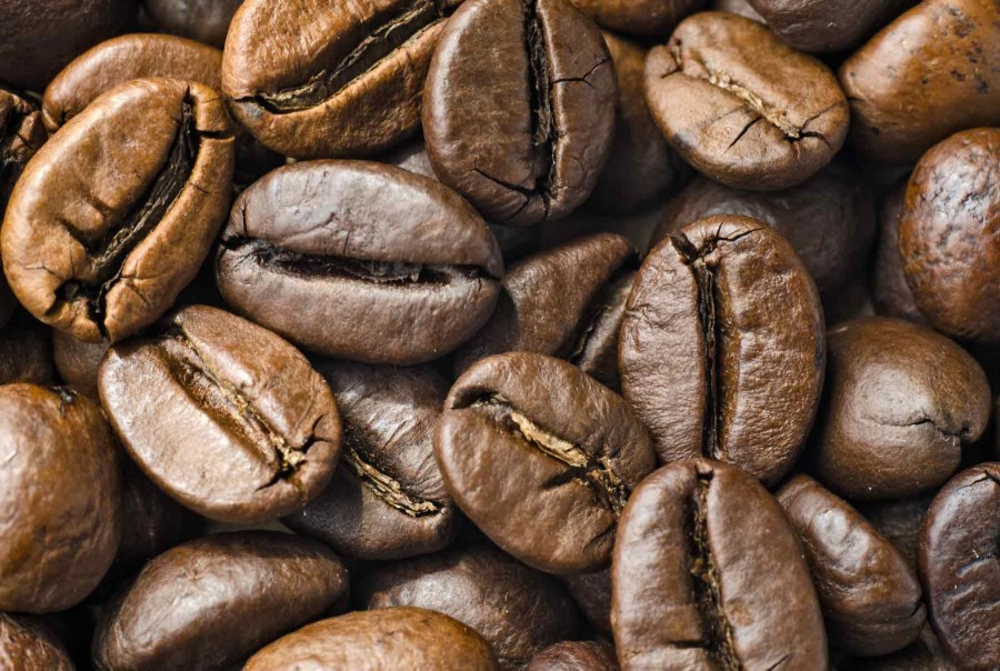 Кофе либерика - что это такое. описание сорта