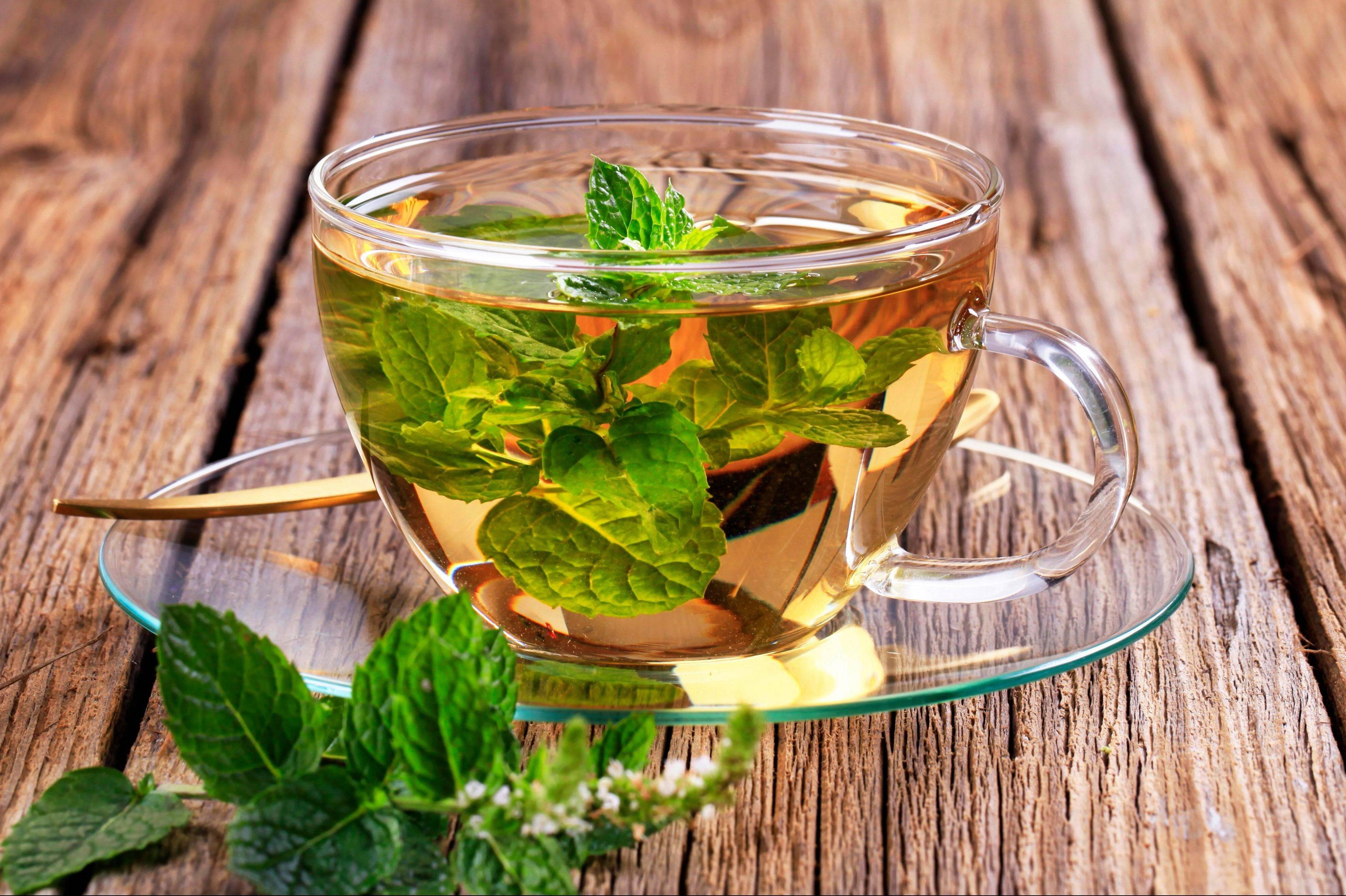 Мята при беременности: можно ли чай с ней на ранних и поздних сроках, вредны ли отвары, противопоказания и отзывы