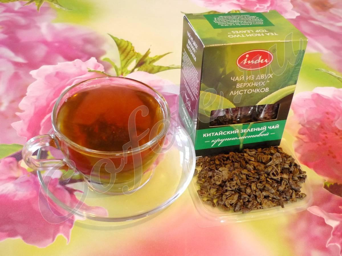 Чай с мятой при беременности: можно ли на ранних и поздних сроках