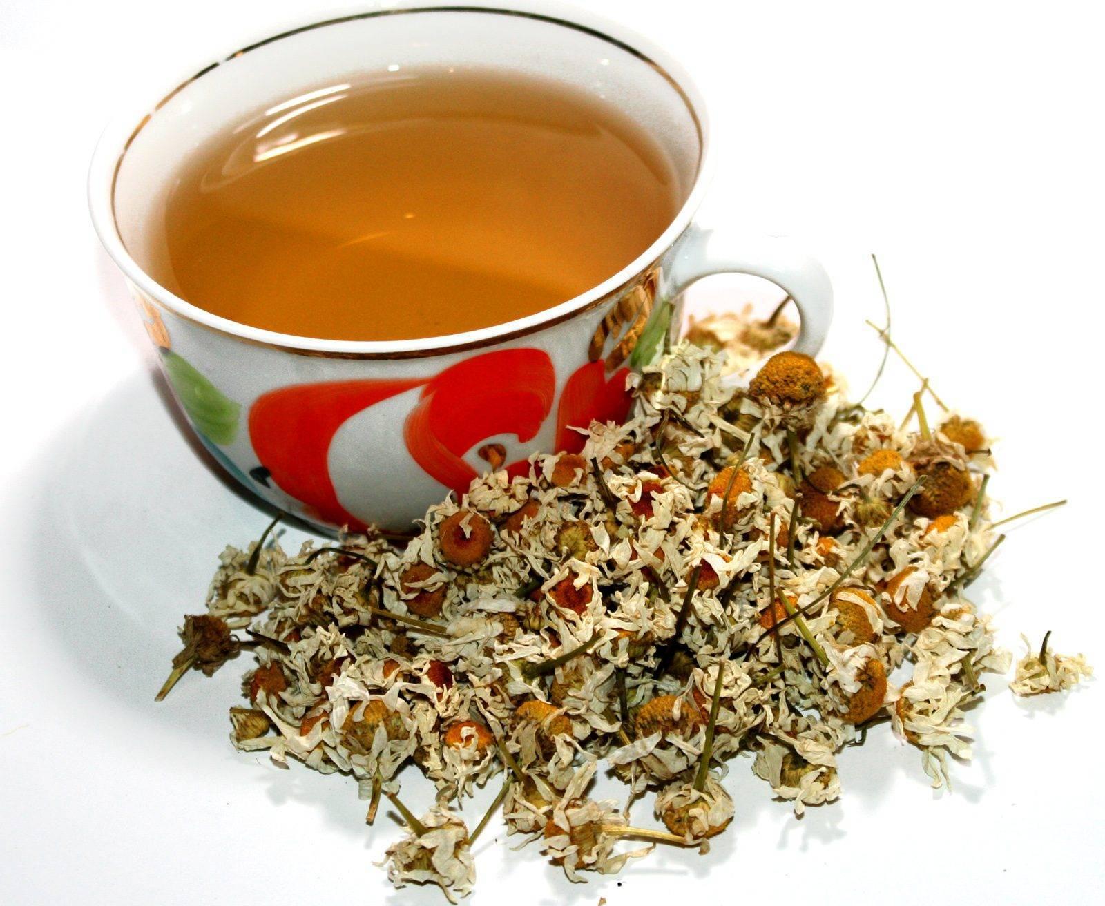 Чай из ромашки: польза
