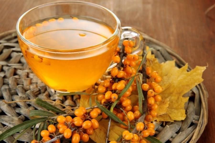 Польза и вред чая из облепихи, как его правильно заварить