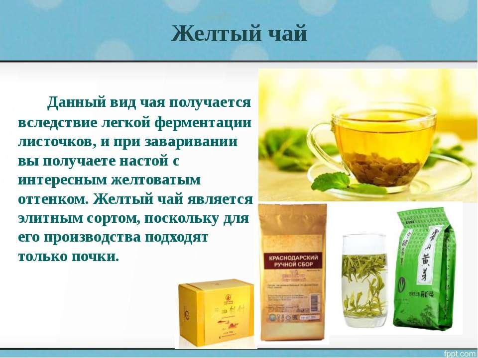 Топ-15 самых полезных чашек чая