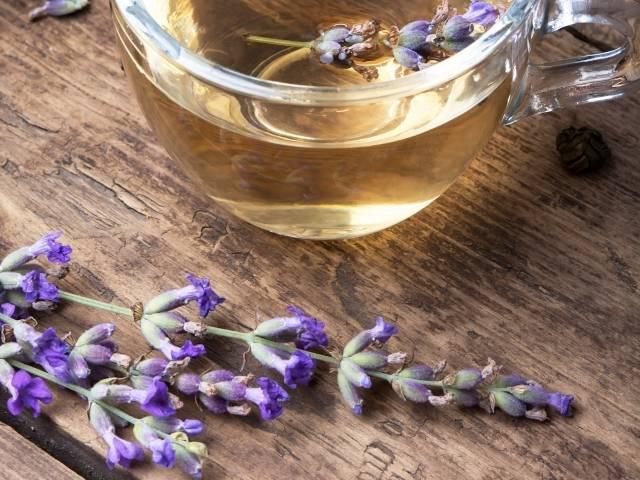 Всё про лаванду: полезные свойства, применение в кулинарии и медицине