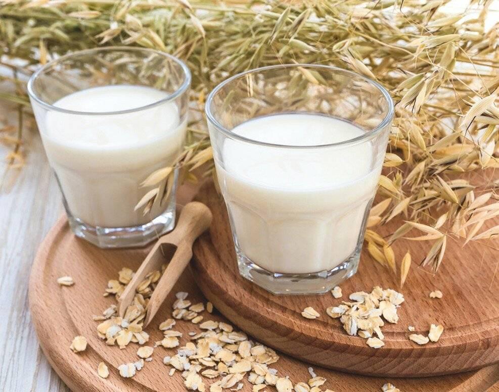 Квас из овса в домашних условиях: польза и вред + рецепт