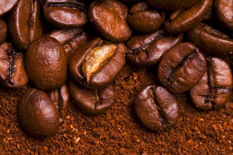Кубинский кофе: основные виды и сорта, какой лучше