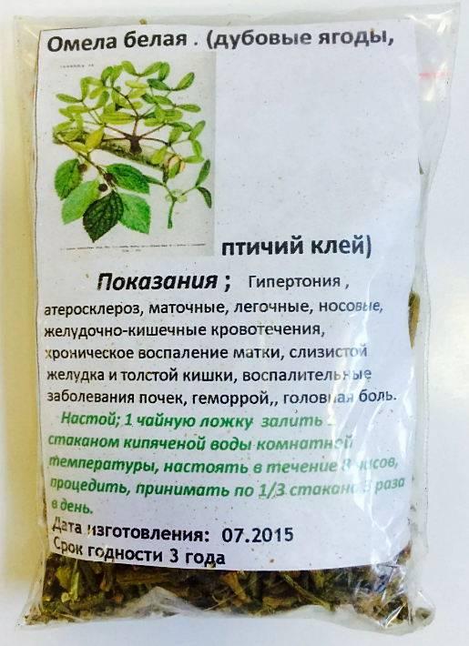 Софора японская - польза и вред, показания для лечения, как принимать настойку плодов, отвар корней и чай