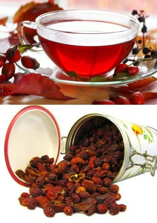 Чем полезен чай из шиповника для организма, как правильно пить и заваривать