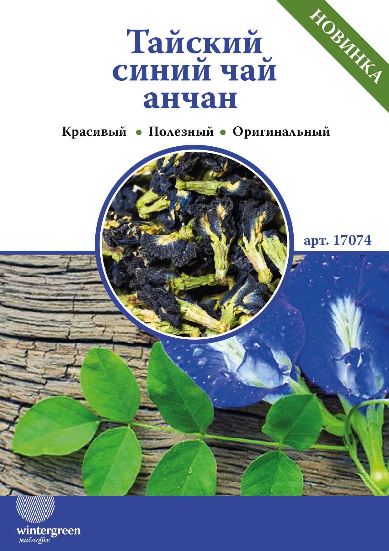 Анчан синий чай, полезные свойства, противопоказания