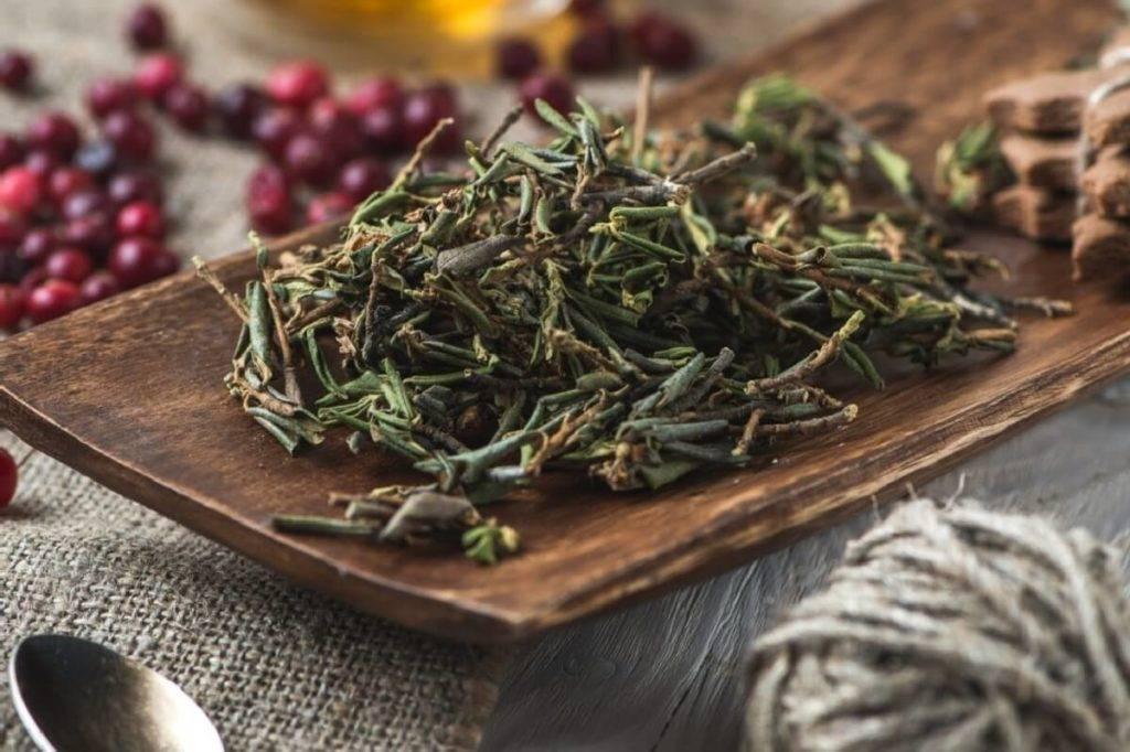 8 лечебных свойств бурятского чая Саган Дайля