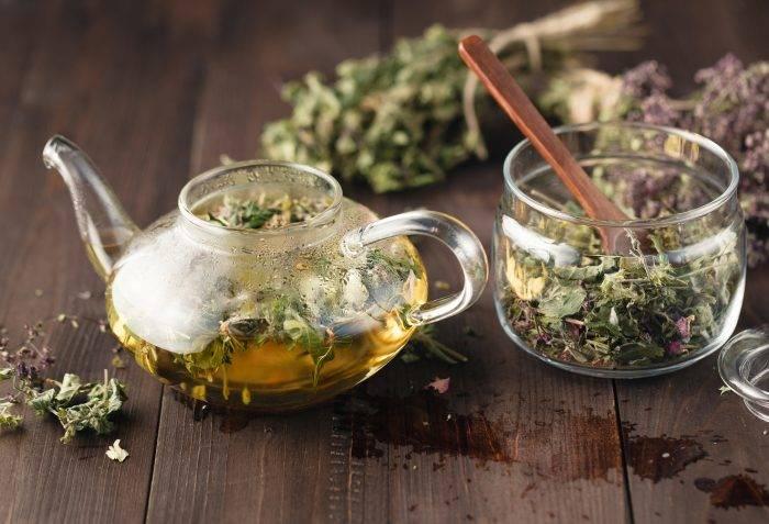 Чай с фенхелем— полезные свойства и рецепты применения