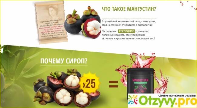 Мангустин (фрукт): полезные свойства, пищевая ценность, описание и применение в медицине