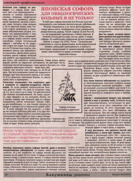 Рецепт приготовления и инструкция по применению японской настойки софора